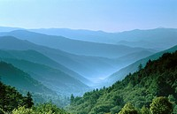 View from Newfound Gap Road, Great Smoky Mountains National Park. North Carolina, USA