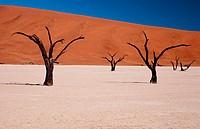 Namib National Park. Sesriem. Namibia.