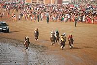 Horse race on beach, Sanlúcar de Barrameda. Cádiz province, Andalusia. Spain