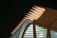 Príncipe Felipe museum of sciences, City of Arts and Sciences, by S. Calatrava. Valencia. Comunidad Valenciana, Spain