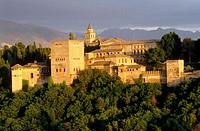 Alhambra. Granada. Spain