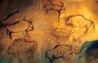 The prehistoric cave of Niaux (Ariège). France