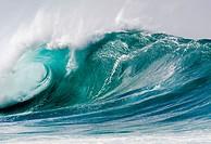 Giant wave, Hawaii (USA)