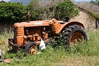 Abandoned Fiat tractor