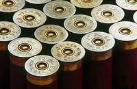 12 gauge shot gun shells.