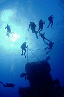 Divers at mooring line at top of USS Saratoga Bikini Atoll.