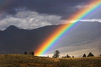 An afternoon rainbow in Yellowstone National Park, Wyoming. USA.