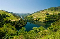 Navia River Valley. Cedemonio. Asturias, Spain.