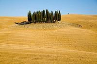 Val d´Orcia. Tuscany, Italy