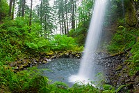 Ponytail Falls, Columbia River Gorge National Scenic Area, Oregon, USA
