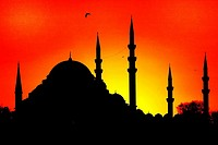 The Fatih Mosque Complex is a large mosque with its many dependencies in the Fatih district of Istanbul, Turkey. Fatih Sultan Mehmed the Conqueror had...