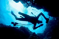 Scuba diver diving on reef