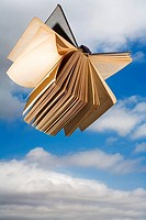 Book in flight