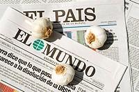 Garlic and Spanish newspapers
