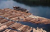 Logs on river awaiting shipment to urban markets, Guizhou. China