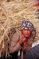 Tibetan peasant woman carrying straw. Tibet, China