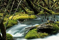Jiuzhaigou Valley nature reserve. Sichuan, China