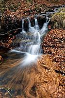 River Baias, Gorbeia Natural Park. Murgia, Alava, Euskadi, Spain