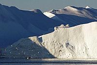 Icebergs from the Jacobshaven glacier. Isbrae. Ilulissat. Disko Bay. Greenland