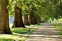 Hyde Park in spring, London. England, UK
