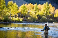 Man fly fishing on the Bigwood River, Sun Valley, Idaho, USA