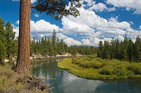Deschutes Wild and Scenic River from Don McGregor Memorial Viewpoint, La Pine State Park, Oregon, USA