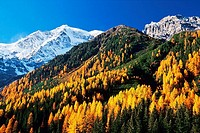 Mount Ortler (3905 m), Solda (Sulden), Stelvio National Park. Trentino-Alto Adige, Italy