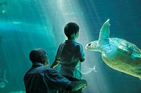 Grandfather and 3 years old grandson visiting the aquarium