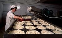 Making blue cheese in the Picos de Europa Cheese. Posada Valdeón. Leon. Picos de Europa National Park. Spain