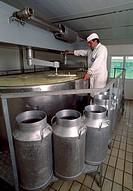 Making blue cheese dairies in the Picos de Europa. Posada de Valdeón. Leon.Parque Nacional Picos de Europa. Spain