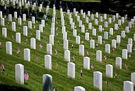 USA, VA, Arlington.  Gravestones at Arlington National Cemetary.