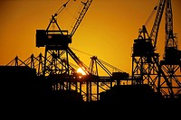 Sunrise through loading cranes, Los Angeles Harbor, California, USA