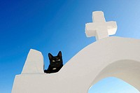 Black cat and white cross, Oia, Santorini, Cyclades islands, Greece