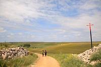 Camino de Santiago, Burgos, Castilla, Castilla León, Spain