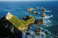 Nugget Point Lighthouse Otago, New Zealand