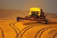 Modern combine finishing the last of the harvest Idaho, United States