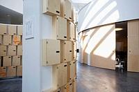 Interior of Orestad College public gymnasium (2005) designed by 3XN Architects, Vestamager, Copenhagen, Denmark