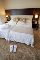 Bedroom  Hotel in Capçanes  Priorat  Tarragona province  Catalonia  Spain