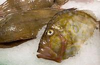 Spain, Catalunia Catalunya, Barcelona, La Rambla, La Boqueria Market, fish for sale
