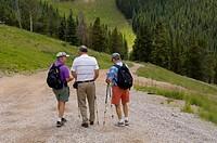 Senior citizen men hiking in the mountain of Vail Colorado