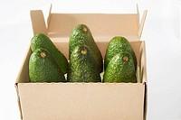 box, avocados