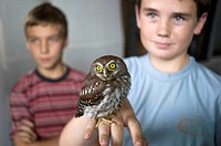 Two boys hold an owl at the Reps Theatre in Harare, Zimbabwe. The bird appeared to be slightly injured.