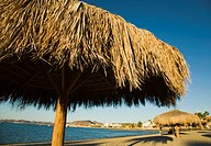 MEXICO La Paz Palapa thatched umbrellas on beach along bay
