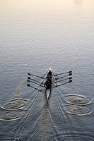Charles River rowing (4 sweep oars) at sunrise, Boston, Massachusetts, USA
