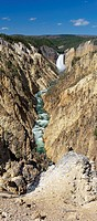 Lower Falls, Yellowstone River, Grand Canyon of the Yellowstone, Yellowstone National Park, Park County, Wyoming, U.S.A.
