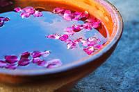 Pink petals in vessel