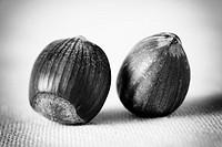 Hazelnuts  Still Life