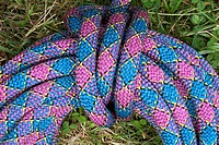 A purple climbing rope on the ground