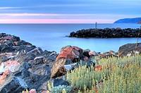 Pleasant Bay Harbour at sunset Cape Breton Island, Nova Scotia, CA