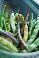A picture of different pods of bean in the bowl